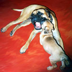 Bullmastiff ZOLTON with his puppy
