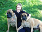 Bullmastiffs ZOLTON and WONDERFUL VICTORY with Elena